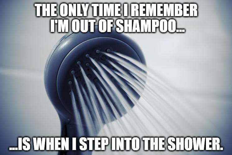 showermeme
